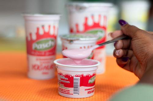Pascha Yoghurt